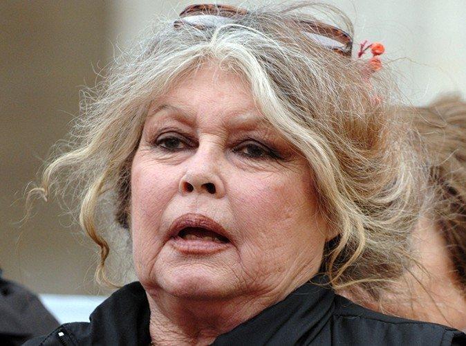 Brigitte Bardot Nu Mai Pot Să I Suport Pe Islamiști Nu