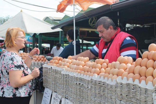 piața de piață a monedelor abtc)