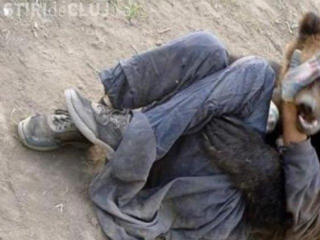 Tánczos Barna: Un bărbat din Harghita a fost atacat de urs, acesta fiind supus unei intervenţii chirurgicale