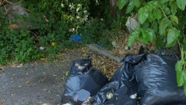 Părți din cadavrul tranșat al unui urs, găsite în saci aruncați sub un pod