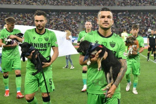 Gest extrem de urât al celor de la FCSB. Au refuzat să prezinte câini pentru adopție