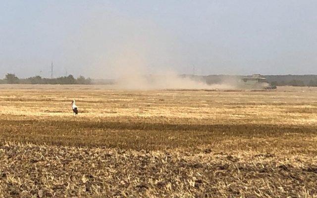 Ungaria pregătește un Fond Privat cu care să cumpere terenuri agricole în statele vecine