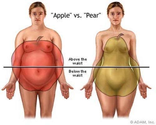 formă centrală subțire a corpului concentrat de lichid gse pentru pierderea în greutate