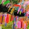 Scrieţi-vă dorinţele şi agăţaţi-le pe crengile de bambus din Grădina Casei Pogor!