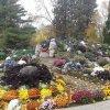 VIDEO&GALERII FOTO: Explozie de culori în Grădina Botanică din Iaşi