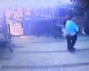 VIDEO: O pisică ninja... într-un bar